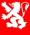Site offciel du Comité des fêtes de la ville de Lyon
