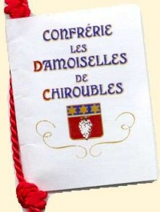 damoiselles