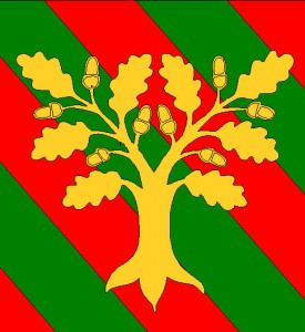 Pennon (drapeau) du Pennonage Laënnec-Transvaal (Lyon 8e)