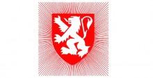Logo comité des fêtes de Lyon